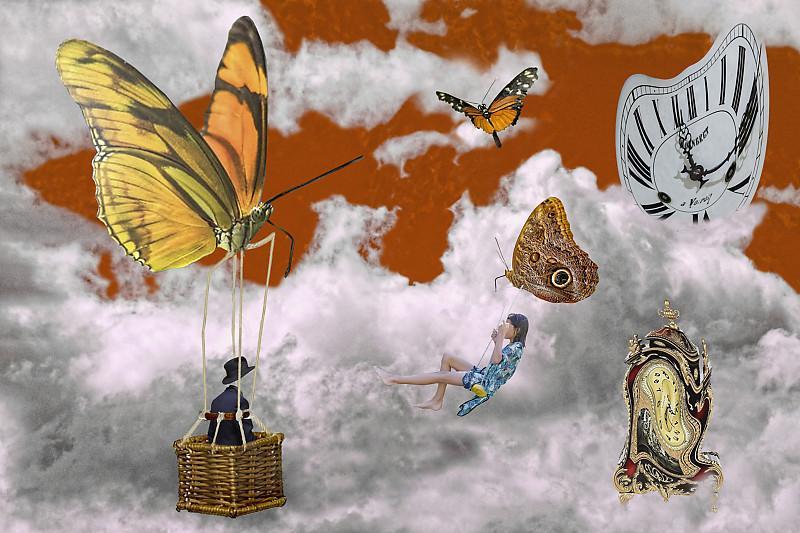 Horloge et papillons dxo